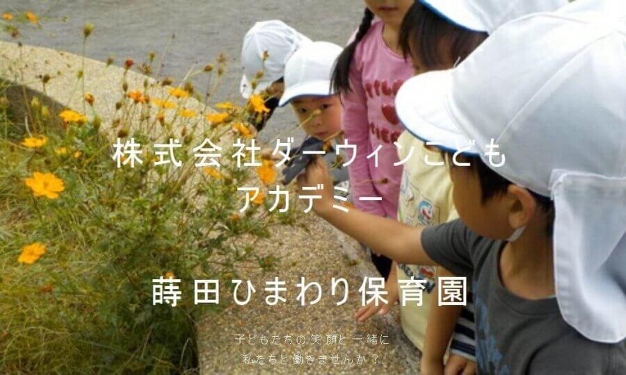 蒔田ひまわり保育園